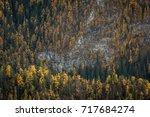 autumn landscape | Shutterstock . vector #717684274