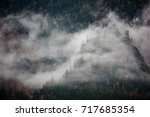 foggy forest in germany | Shutterstock . vector #717685354