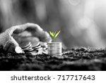 coins stacked on fertile soil.... | Shutterstock . vector #717717643