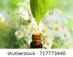 dripping chamomile essential... | Shutterstock . vector #717773440
