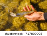 trout fishing in a mountain... | Shutterstock . vector #717800008