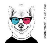 portrait of the sakita inu dog... | Shutterstock .eps vector #717814450