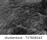 black fur. mink fur. luxury...   Shutterstock . vector #717828163