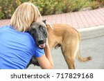 Small photo of Female volunteer with homeless dog outdoors. Concept of volunteering and animal shelters