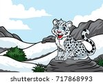 Young Snow Leopard In The Snow...