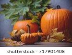 Autumn Little Pumpkin With...