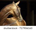 gold hair akhal teke. portrait...   Shutterstock . vector #717906163