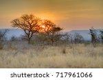 Mkuze Sunset. Sun Sets Over...