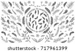 feather pattern. hand drawn... | Shutterstock .eps vector #717961399