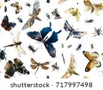 seamless pattern with insect.... | Shutterstock . vector #717997498