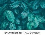 foliage texture background ... | Shutterstock . vector #717999004