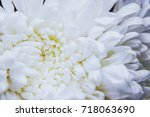 close up top view of white...   Shutterstock . vector #718063690