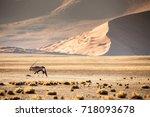 namib desert  sand dunes at...   Shutterstock . vector #718093678