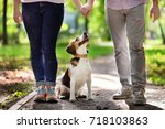 young couple with beagle dog in ... | Shutterstock . vector #718103863