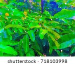 green leaves concept   abstract ...   Shutterstock . vector #718103998