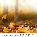 beautiful autumn landscape with ...