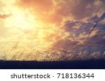 dramatic clouds with grass field | Shutterstock . vector #718136344