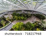 Interior Of Cloud Forest ...