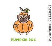 cute dog of pug breed in a...   Shutterstock .eps vector #718236529