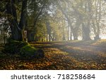 Autumn In The Countryside With...