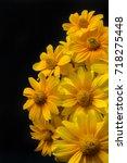 Beautiful Yellow Flowers On...