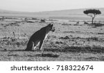 future | Shutterstock . vector #718322674