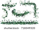 ivy vines. set of realistic... | Shutterstock .eps vector #718349320
