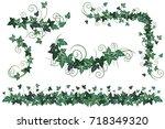 ivy vines. set of realistic... | Shutterstock .eps vector #718349320