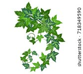 ivy  hedera helix . hand drawn... | Shutterstock .eps vector #718349590