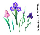 vector set with outline purple  ...   Shutterstock .eps vector #718370770