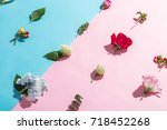 many beautiful flower on pink... | Shutterstock . vector #718452268