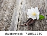 jasmine with vanilla on a... | Shutterstock . vector #718511350