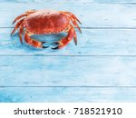 cooked brown crab or edible... | Shutterstock . vector #718521910