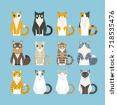 Sitting Cats Of Various...