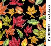 autumn seamless pattern   Shutterstock . vector #718566193