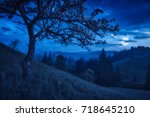 flowering tree on a hill in a... | Shutterstock . vector #718645210