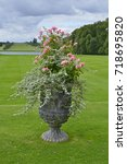 A Decorative Classical Urn...