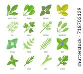 set vector illustration of... | Shutterstock .eps vector #718702129