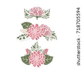 set frames with flowers peonies ... | Shutterstock . vector #718705594