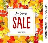 vector illustration of sale... | Shutterstock .eps vector #718722634