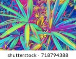 tropical leaf top view. neon... | Shutterstock . vector #718794388