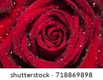 beautiful close up red roses  ...   Shutterstock . vector #718869898