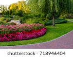 flowerbed with flowers in a...