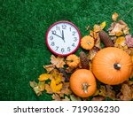 various autumn leaves and... | Shutterstock . vector #719036230
