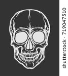 white skull vector isolated on...   Shutterstock .eps vector #719047510