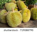 fresh durian fruit. king of... | Shutterstock . vector #719088790