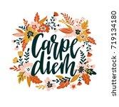 carpe diem hand written...   Shutterstock .eps vector #719134180