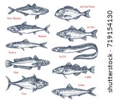 fish species sketch icons set....