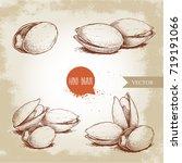 hand drawn pistachios set. open ... | Shutterstock .eps vector #719191066