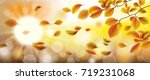 autumn beech foliage fall... | Shutterstock .eps vector #719231068